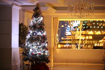 【光きらめく特別な一日】 クリスマスウェディングプラン